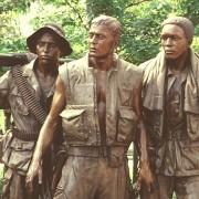 Vietnam Veterans Mesothelioma Lawyer